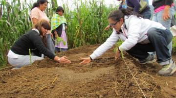 Mujeres sembrando 4