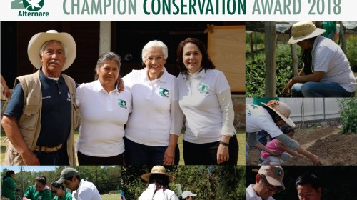 ALTERNARE- CONSERVATION CHAMPION AWARD