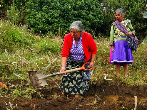 Alternare instructors demonstrating proactive land management practices. Photo credit Alternare